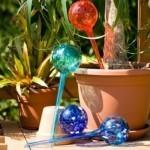 Irrigatore Naturale per Piante