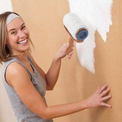Rullo Smart Pittura In Azione