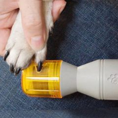Pedicure Unghie Per Cani E Gatti