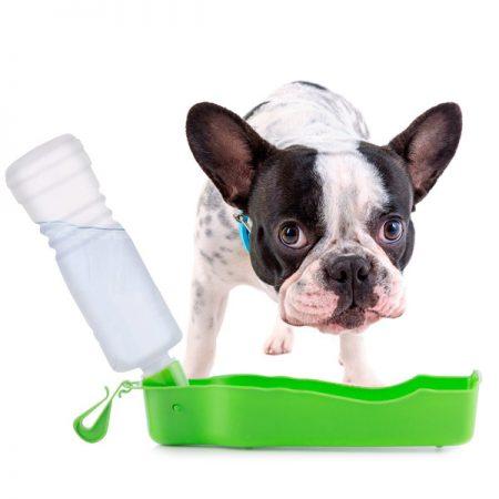 borraccia-portatile-con-ciotola-per-animali-domestici-pet-prior