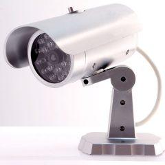 Videocamera Simulata Con Sensore